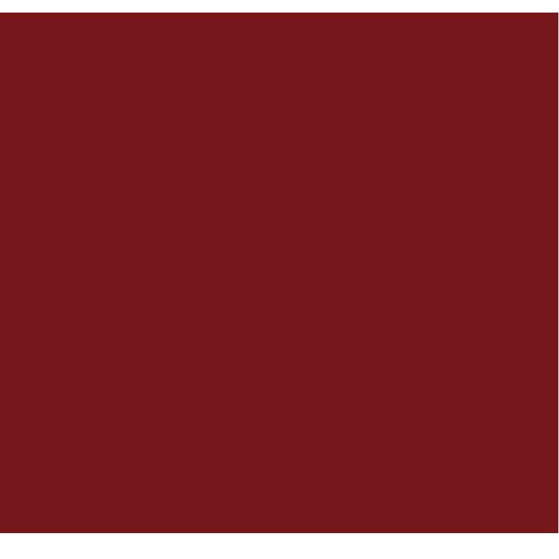 台依湖集团有限公司